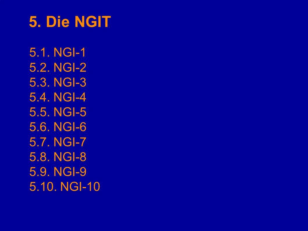 5. Die NGIT 5.1. NGI-1 5.2. NGI-2 5.3. NGI-3 5.4. NGI-4 5.5. NGI-5 5.6. NGI-6 5.7. NGI-7 5.8. NGI-8 5.9. NGI-9 5.10. NGI-10