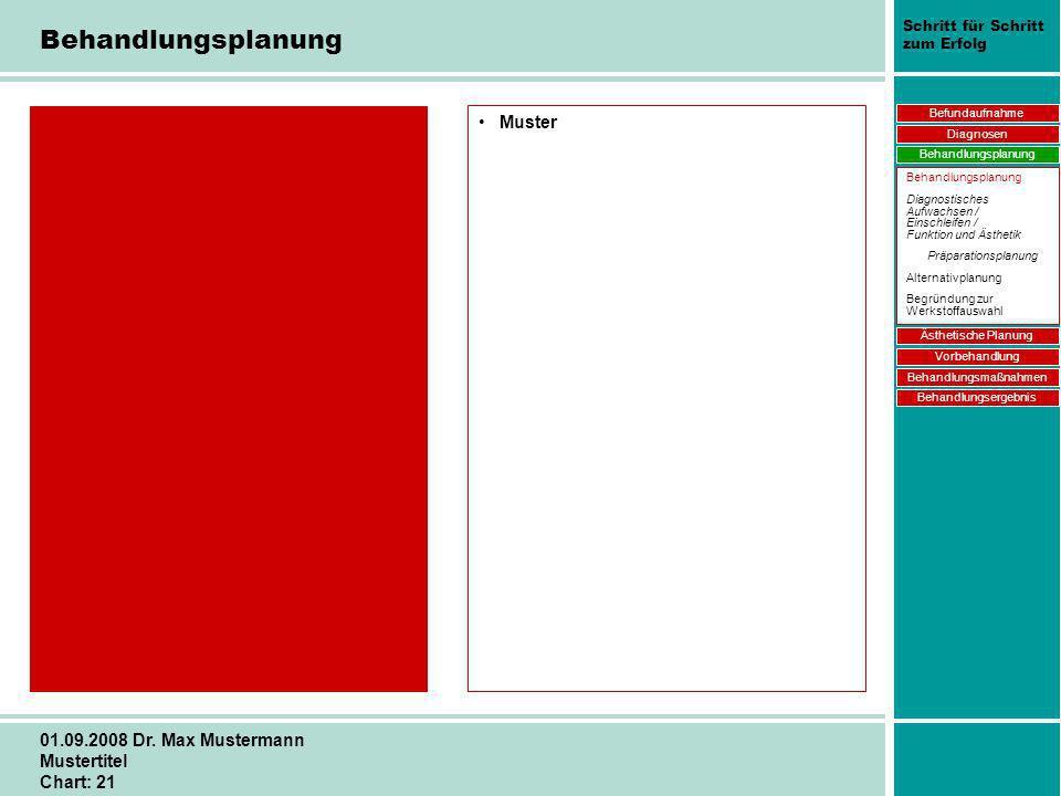 Schritt für Schritt zum Erfolg 01.09.2008 Dr. Max Mustermann Mustertitel Chart: 21 Behandlungsplanung Muster Befundaufnahme Diagnosen Behandlungsplanu