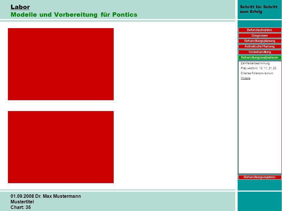 Schritt für Schritt zum Erfolg 01.09.2008 Dr. Max Mustermann Mustertitel Chart: 35 Labor Modelle und Vorbereitung für Pontics Befundaufnahme Diagnosen