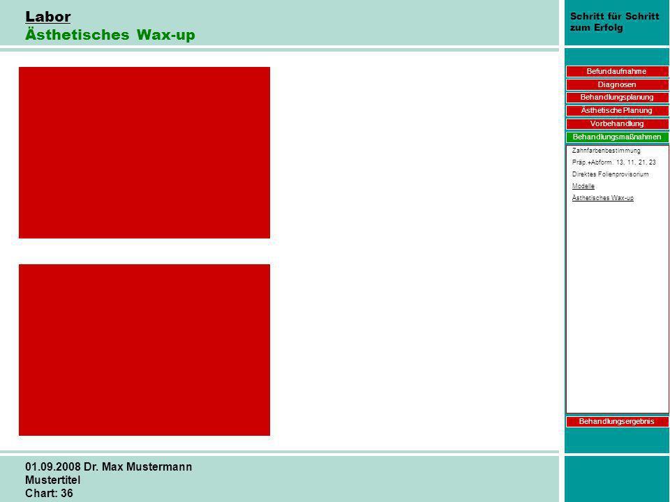 Schritt für Schritt zum Erfolg 01.09.2008 Dr. Max Mustermann Mustertitel Chart: 36 Labor Ästhetisches Wax-up Befundaufnahme Diagnosen Behandlungsplanu