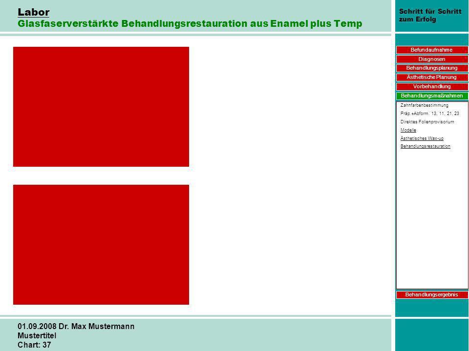 Schritt für Schritt zum Erfolg 01.09.2008 Dr. Max Mustermann Mustertitel Chart: 37 Labor Glasfaserverstärkte Behandlungsrestauration aus Enamel plus T