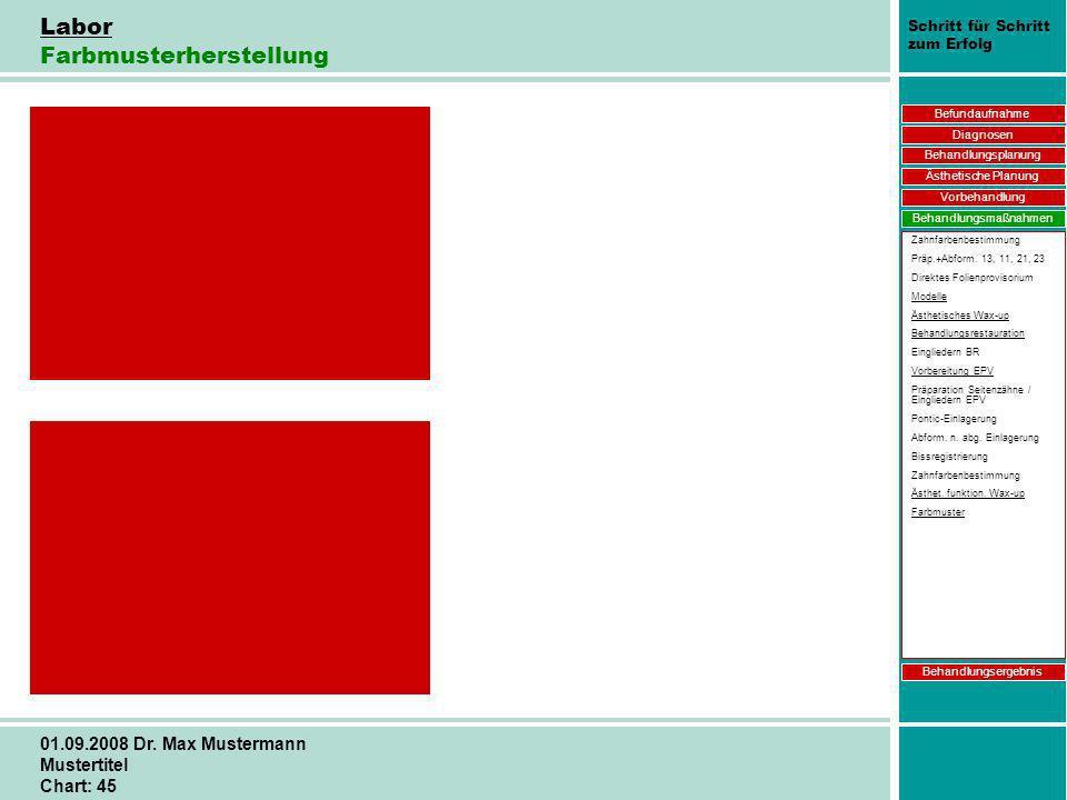 Schritt für Schritt zum Erfolg 01.09.2008 Dr. Max Mustermann Mustertitel Chart: 45 Labor Farbmusterherstellung Befundaufnahme Diagnosen Behandlungspla