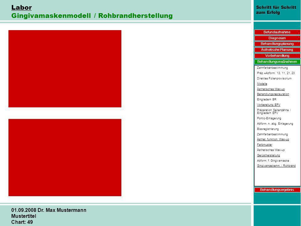 Schritt für Schritt zum Erfolg 01.09.2008 Dr. Max Mustermann Mustertitel Chart: 49 Labor Gingivamaskenmodell / Rohbrandherstellung Befundaufnahme Diag