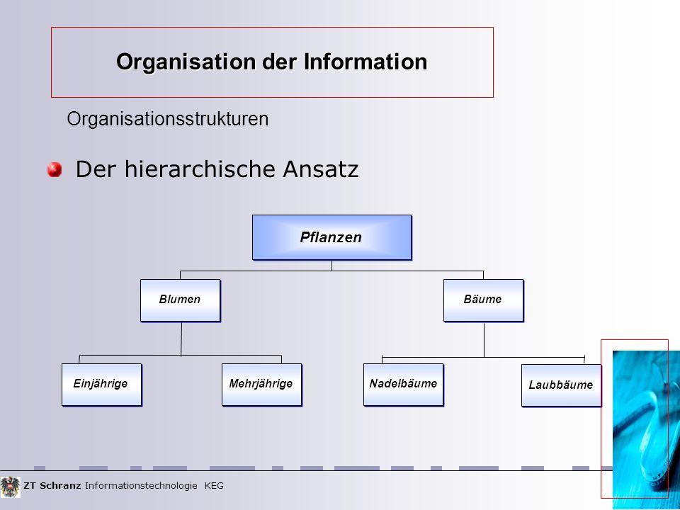 ZT Schranz Informationstechnologie KEG Organisation der Information Der hierarchische Ansatz Organisationsstrukturen Pflanzen Einjährige Blumen Mehrjährige Nadelbäume Bäume Laubbäume