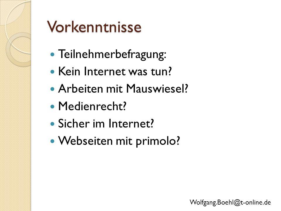 Vorkenntnisse Teilnehmerbefragung: Kein Internet was tun.