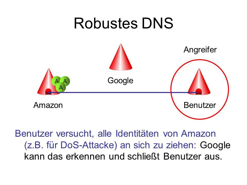 Robustes DNS Benutzer versucht, alle Identitäten von Amazon (z.B. für DoS-Attacke) an sich zu ziehen: Google kann das erkennen und schließt Benutzer a