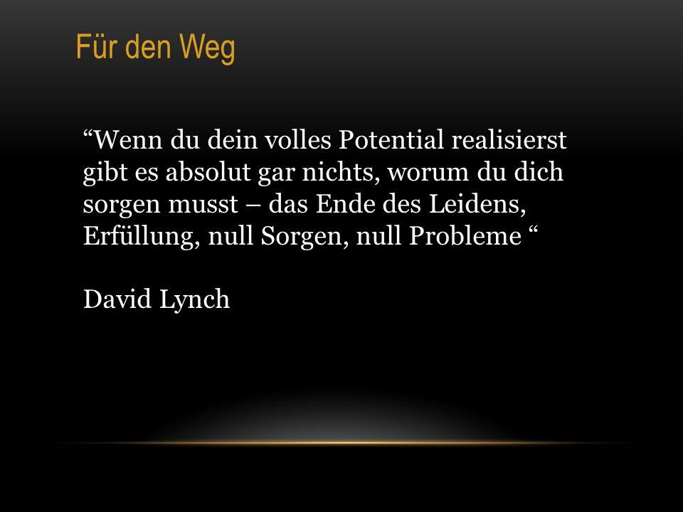 Für den Weg Wenn du dein volles Potential realisierst gibt es absolut gar nichts, worum du dich sorgen musst – das Ende des Leidens, Erfüllung, null Sorgen, null Probleme David Lynch