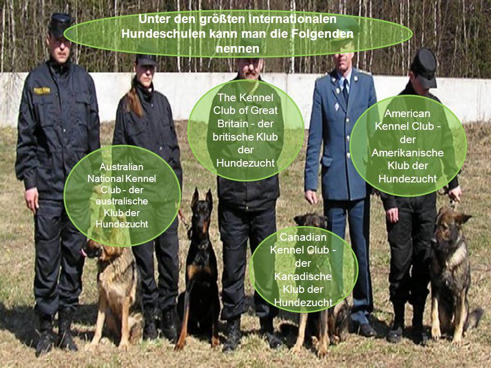 Unter den größten internationalen Hundeschulen kann man die Folgenden nennen Australian National Kennel Club - der australische Klub der Hundezucht Canadian Kennel Club - der Kanadische Klub der Hundezucht The Kennel Club of Great Britain - der britische Klub der Hundezucht American Kennel Club - der Amerikanische Klub der Hundezucht