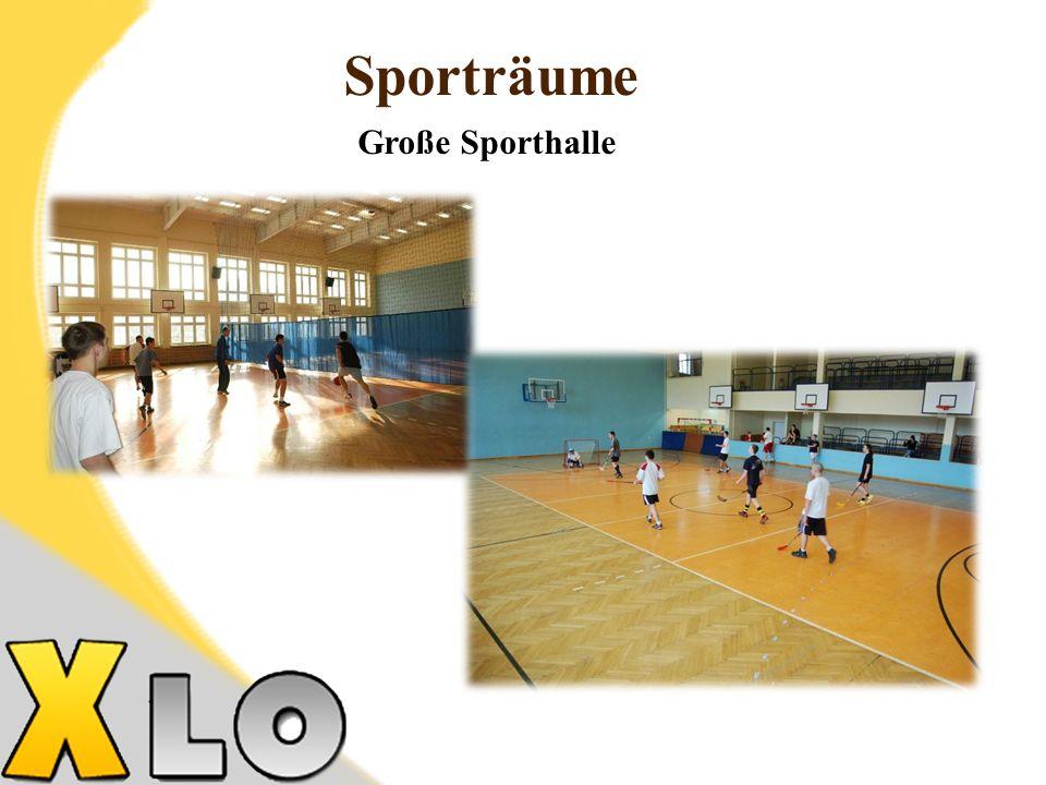 Sporträume Große Sporthalle