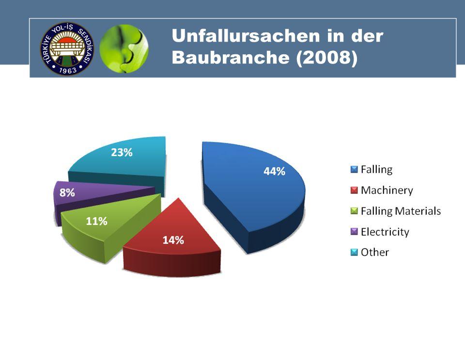 Unfallursachen in der Baubranche (2008)