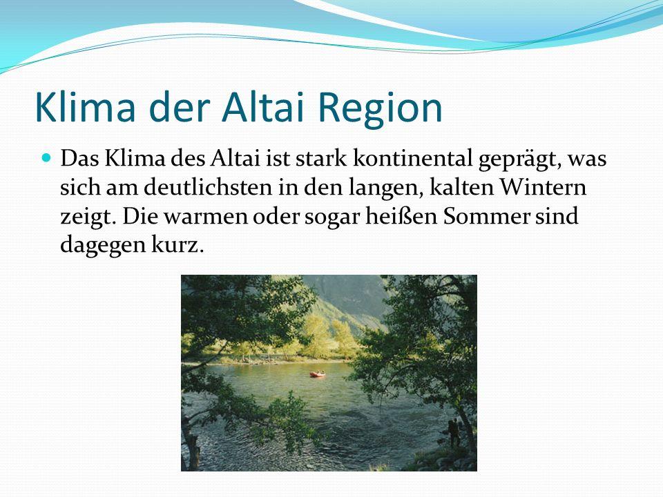 Klima der Altai Region Das Klima des Altai ist stark kontinental geprägt, was sich am deutlichsten in den langen, kalten Wintern zeigt. Die warmen ode