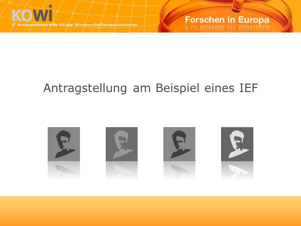 Antragstellung am Beispiel eines IEF