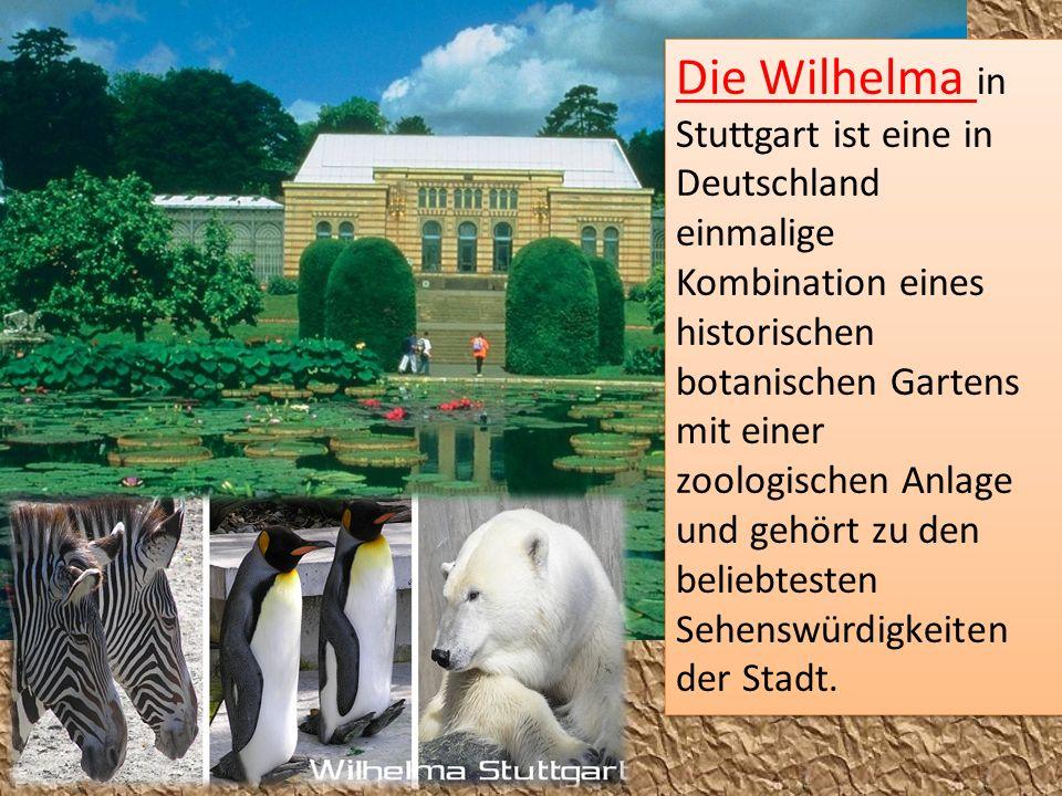 Die Wilhelma in Stuttgart ist eine in Deutschland einmalige Kombination eines historischen botanischen Gartens mit einer zoologischen Anlage und gehör