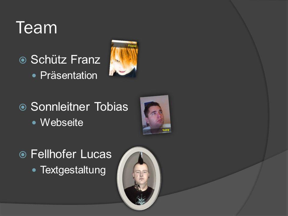Team Schütz Franz Präsentation Sonnleitner Tobias Webseite Fellhofer Lucas Textgestaltung