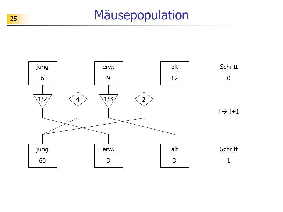 25 Mäusepopulation jung 6 erw. 9 alt 12 jung 60 erw. 3 alt 3 1/21/3 42 Schritt 0 Schritt 1 i i+1