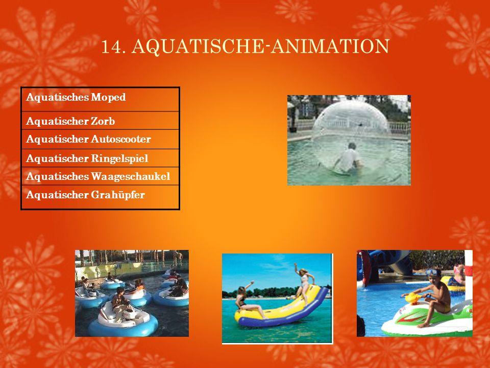 14. AQUATISCHE-ANIMATION Aquatisches Moped Aquatischer Zorb Aquatischer Autoscooter Aquatischer Ringelspiel Aquatisches Waageschaukel Aquatischer Grah