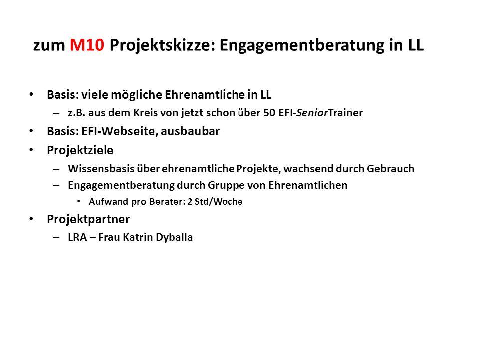 zum M10 Projektskizze: Engagementberatung in LL Basis: viele mögliche Ehrenamtliche in LL – z.B. aus dem Kreis von jetzt schon über 50 EFI-SeniorTrain