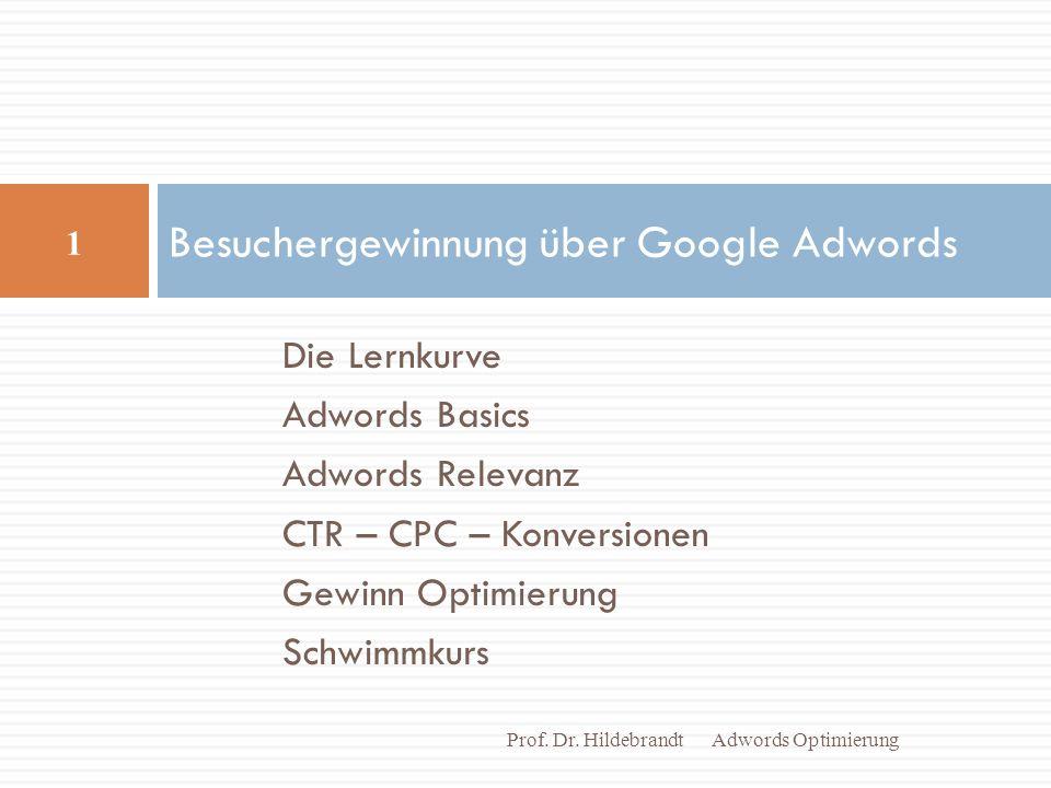 Die Lernkurve Adwords Basics Adwords Relevanz CTR – CPC – Konversionen Gewinn Optimierung Schwimmkurs Besuchergewinnung über Google Adwords Adwords Optimierung 1 Prof.