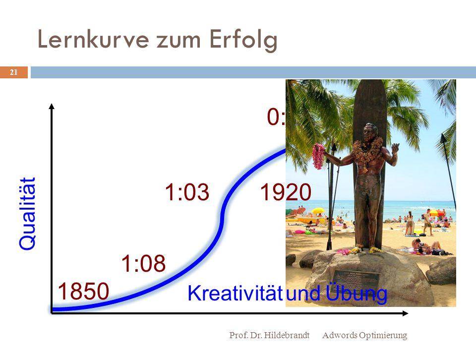 Lernkurve zum Erfolg Adwords OptimierungProf.Dr.