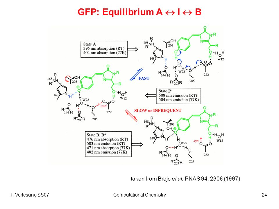 1. Vorlesung SS07Computational Chemistry24 taken from Brejc et al. PNAS 94, 2306 (1997) GFP: Equilibrium A I B