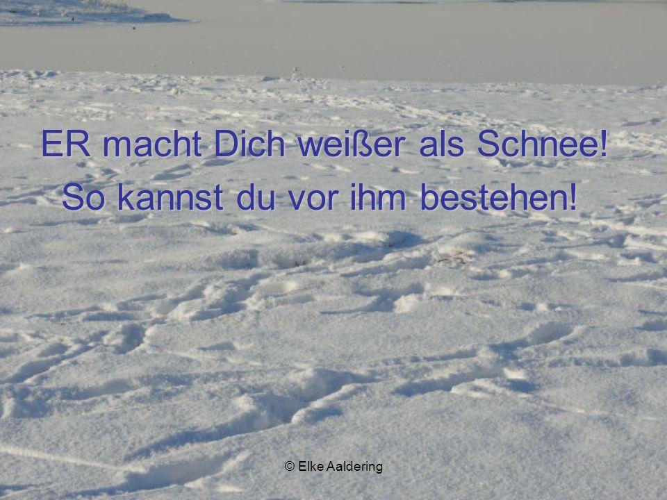 © Elke Aaldering ER vergibt dir deine Schuld...