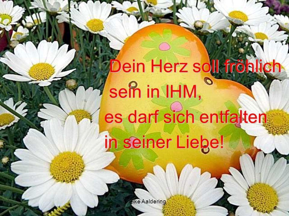 © Elke Aaldering ER lässt die Sonne in deine Tage scheinen und schenkt dir dein Leben! BLÜHE FÜR IHN!