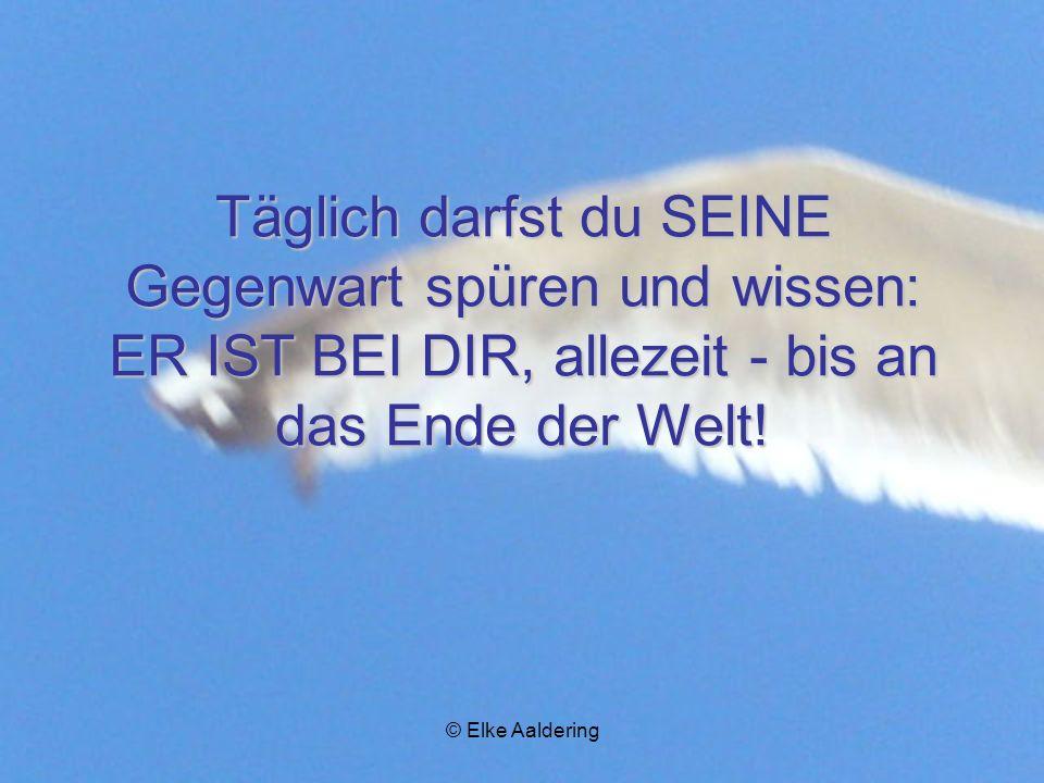 © Elke Aaldering E ER ist dein Licht, wachse zu IHM hin!