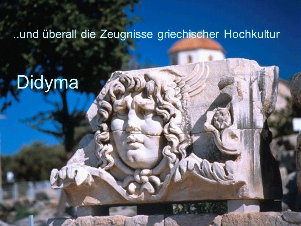 42..und überall die Zeugnisse griechischer Hochkultur Didyma