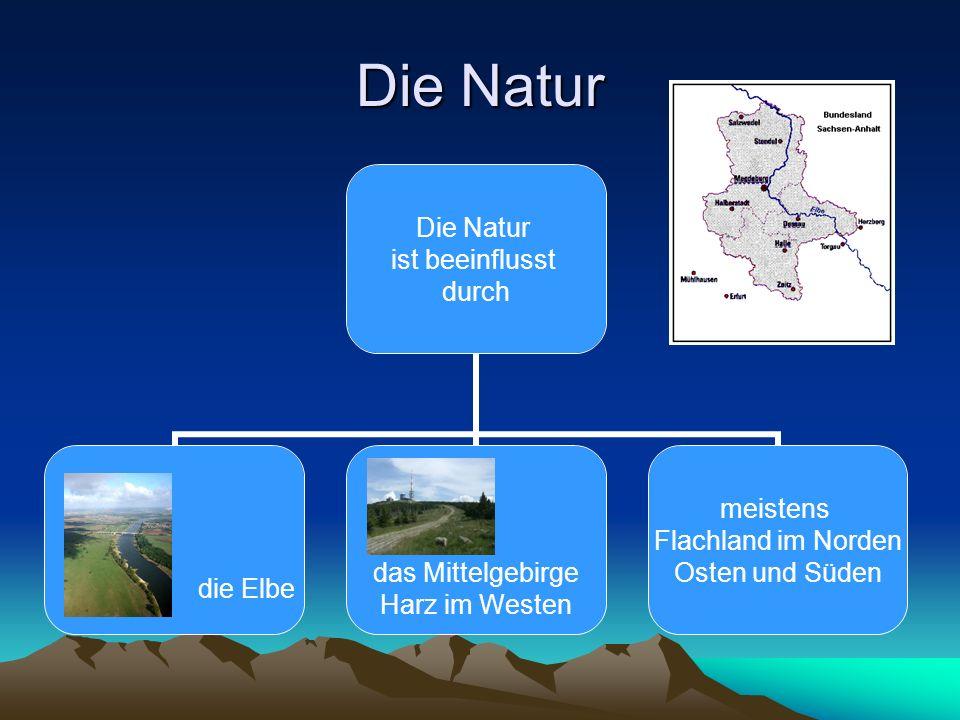 Die Natur ist beeinflusst durch die Elbe das Mittelgebirge Harz im Westen meistens Flachland im Norden Osten und Süden