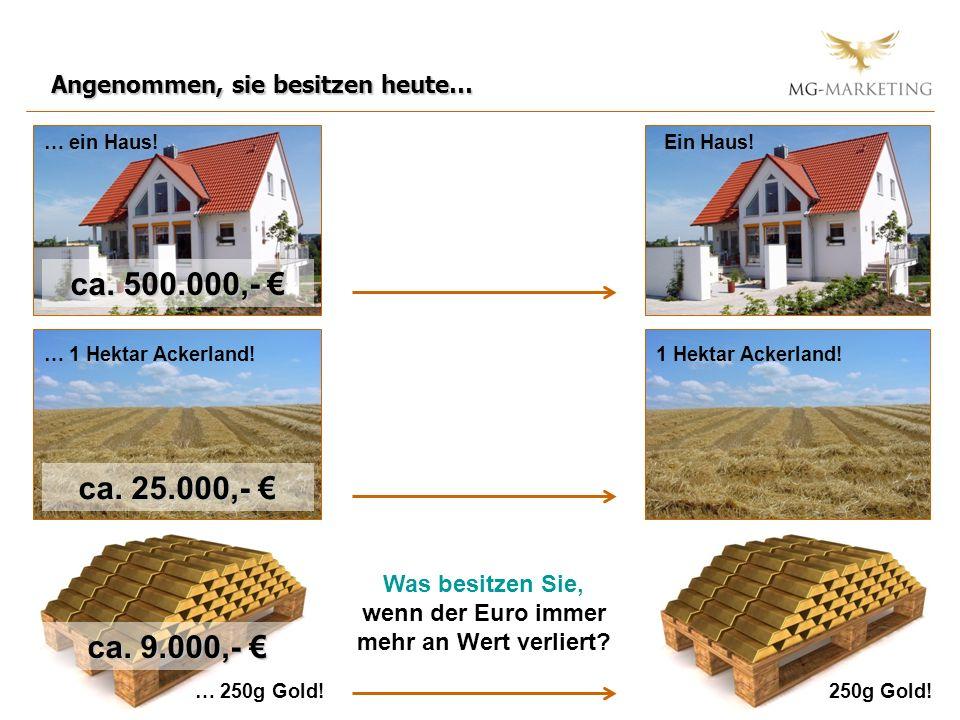 Angenommen, sie besitzen heute… … ein Haus! … 1 Hektar Ackerland! Ein Haus! 1 Hektar Ackerland! … 250g Gold!250g Gold! Was besitzen Sie, wenn der Euro