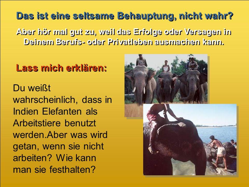 Turn on your speakers.Turn on your speakers. Verhalte Dich nicht wie ein Elefant.