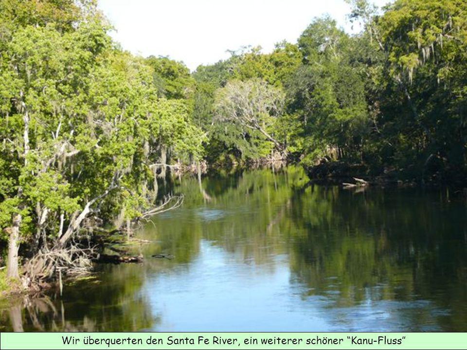 Wir überquerten den Santa Fe River, ein weiterer schöner Kanu-Fluss