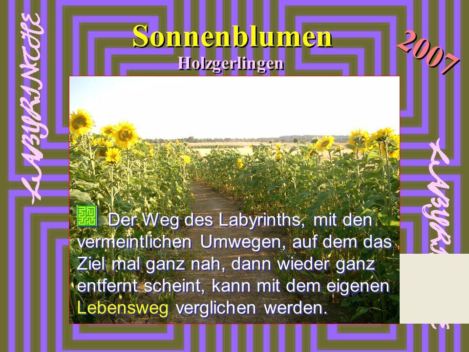 Sonnenblumen Holzgerlingen 2007 Der Weg des Labyrinths, mit den vermeintlichen Umwegen, auf dem das Ziel mal ganz nah, dann wieder ganz entfernt schei