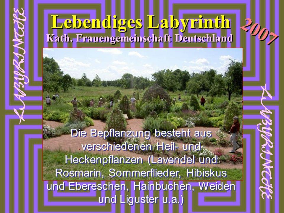 2007 Lebendiges Labyrinth Kath. Frauengemeinschaft Deutschland Die Bepflanzung besteht aus verschiedenen Heil- und Heckenpflanzen (Lavendel und Rosmar