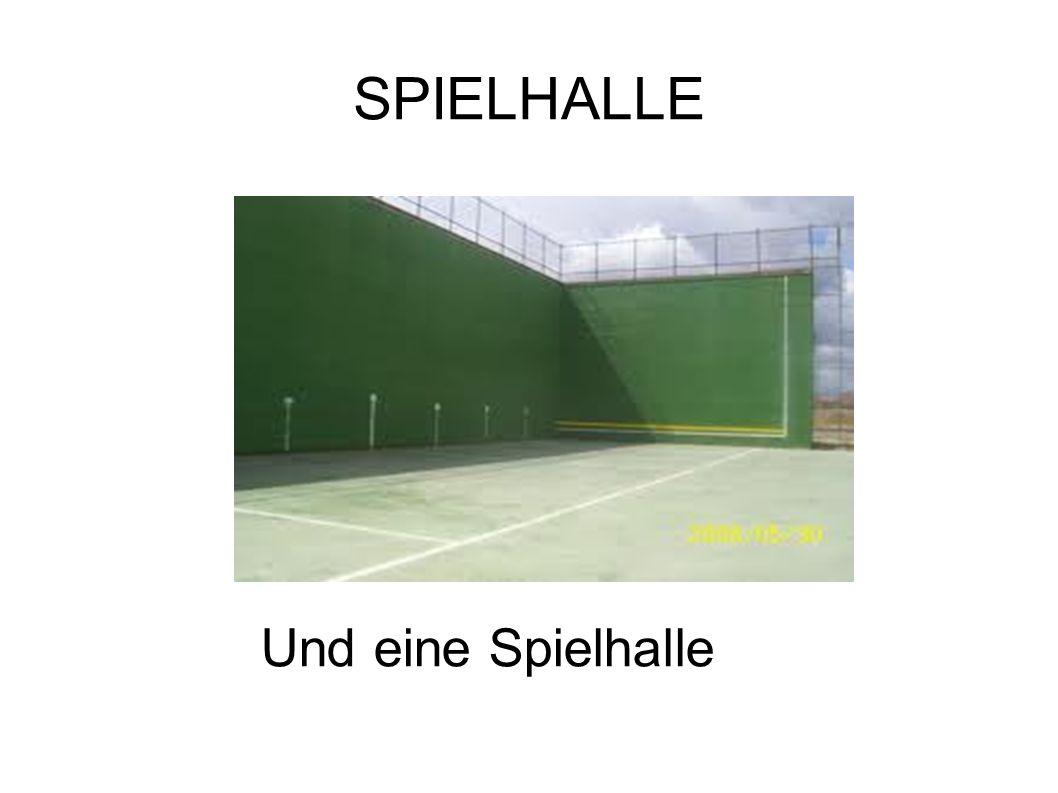 SPORTHALLEN Das Gymnasium hat zwei Sporthallen