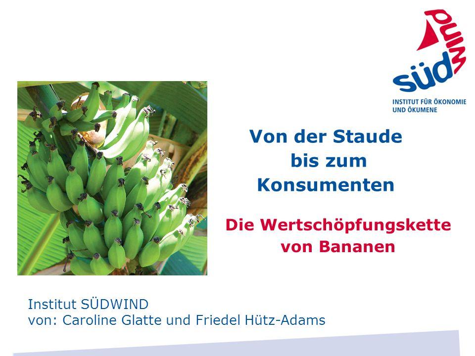 Die Wertschöpfungskette von Bananen Institut SÜDWIND von: Caroline Glatte und Friedel Hütz-Adams Von der Staude bis zum Konsumenten