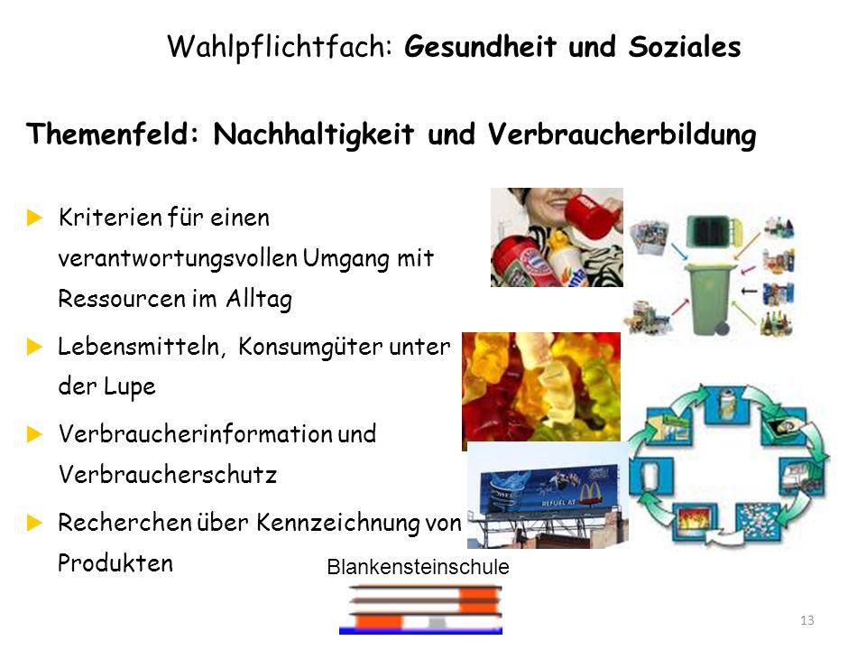 Blankensteinschule 13 Wahlpflichtfach: Gesundheit und Soziales Themenfeld: Nachhaltigkeit und Verbraucherbildung Kriterien für einen verantwortungsvol