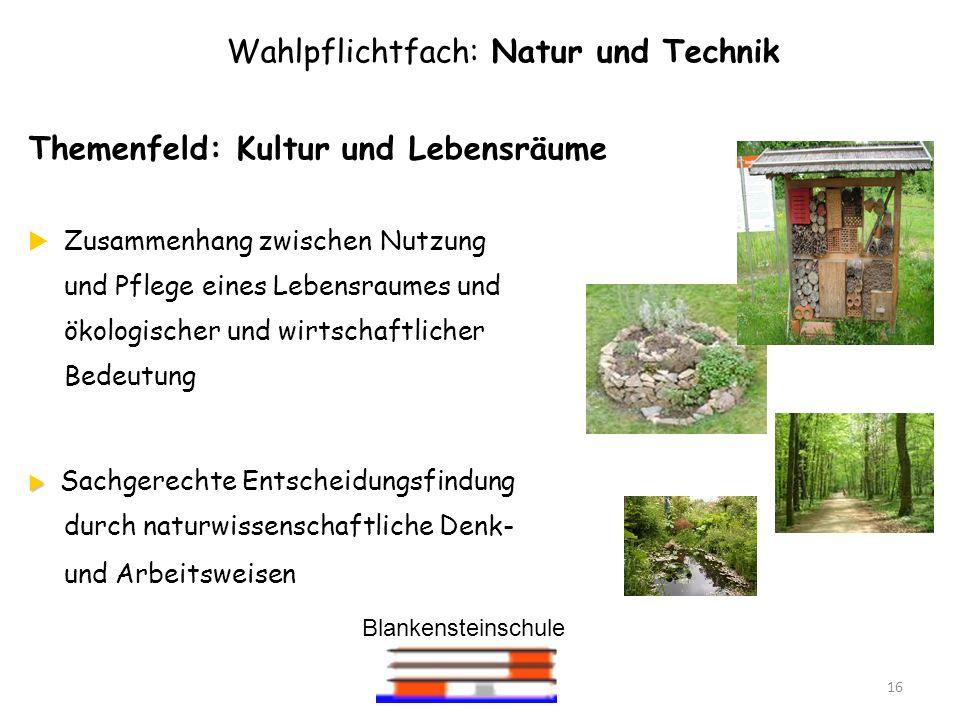 Blankensteinschule 16 Wahlpflichtfach: Natur und Technik Themenfeld: Kultur und Lebensräume Zusammenhang zwischen Nutzung und Pflege eines Lebensraume