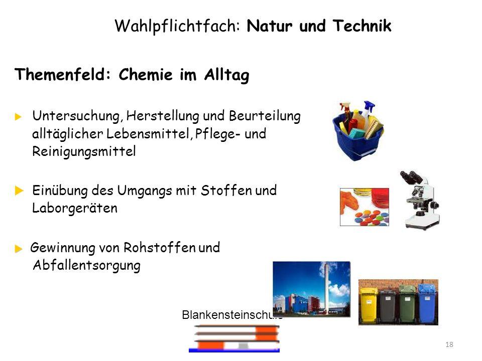 Blankensteinschule 18 Wahlpflichtfach: Natur und Technik Themenfeld: Chemie im Alltag Untersuchung, Herstellung und Beurteilung alltäglicher Lebensmit
