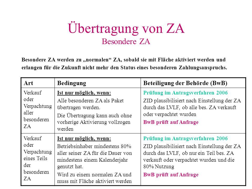 Übertragung von ZA Besondere ZA Besondere ZA werden zu normalen ZA, sobald sie mit Fläche aktiviert werden und erlangen für die Zukunft nicht mehr den