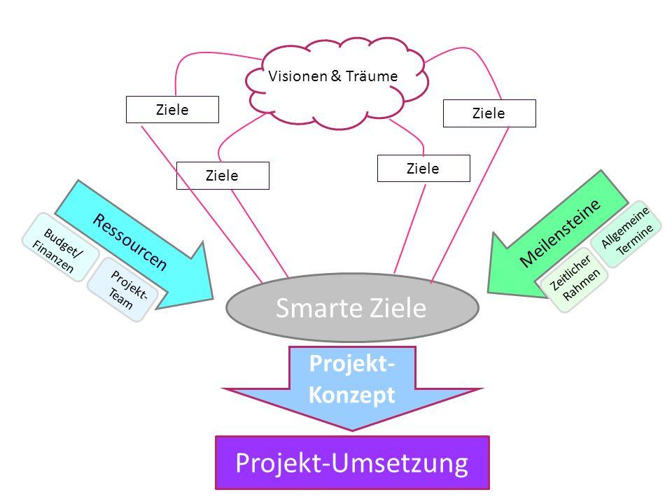Visionen & Träume Ziele Ressourcen Budget/ Finanzen Projekt- Team Meilensteine Zeitlicher Rahmen Allgemeine Termine Smarte Ziele Projekt- Konzept Proj