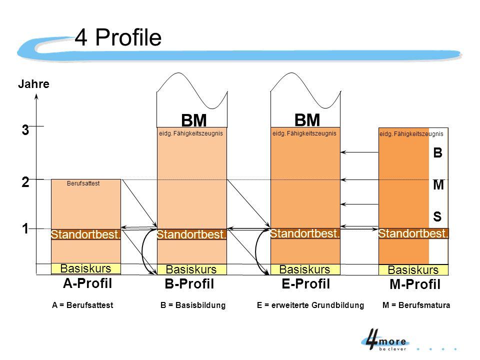 4 Profile 2 Basiskurs 1 2 3 Jahre B-ProfilE-Profil M-Profil BM A = Berufsattest B = Basisbildung E = erweiterte Grundbildung M = Berufsmatura Standort