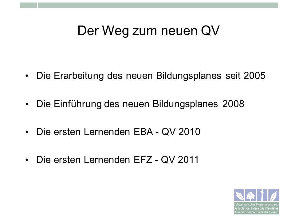 Der Weg zum neuen QV Die Erarbeitung des neuen Bildungsplanes seit 2005 Die Einführung des neuen Bildungsplanes 2008 Die ersten Lernenden EBA - QV 201