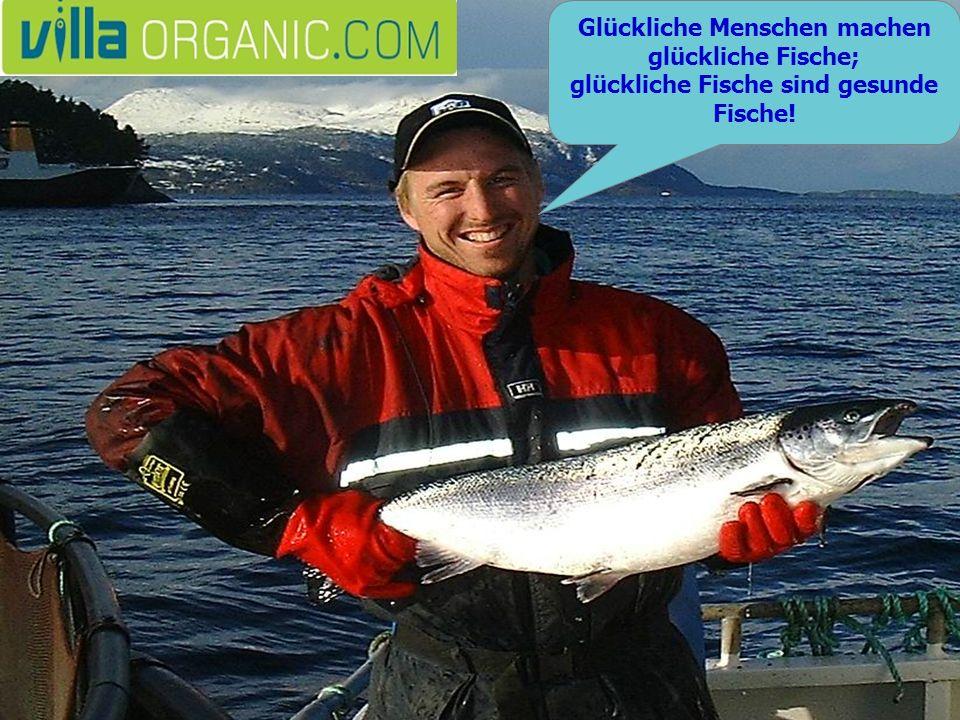Glückliche Menschen machen glückliche Fische; glückliche Fische sind gesunde Fische!