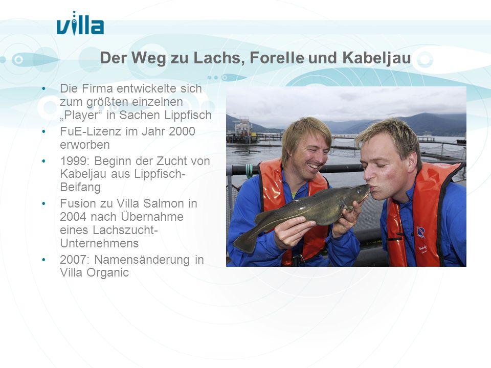 Der Weg zu Lachs, Forelle und Kabeljau Die Firma entwickelte sich zum größten einzelnen Player in Sachen Lippfisch FuE-Lizenz im Jahr 2000 erworben 19