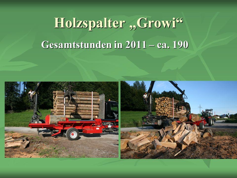 Holzspalter Growi Gesamtstunden in 2011 – ca. 190