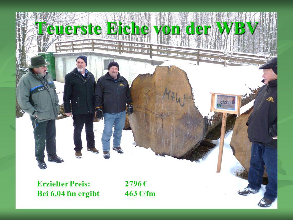Teuerste Eiche von der WBV Erzielter Preis: 2796 Bei 6,04 fm ergibt463 /fm