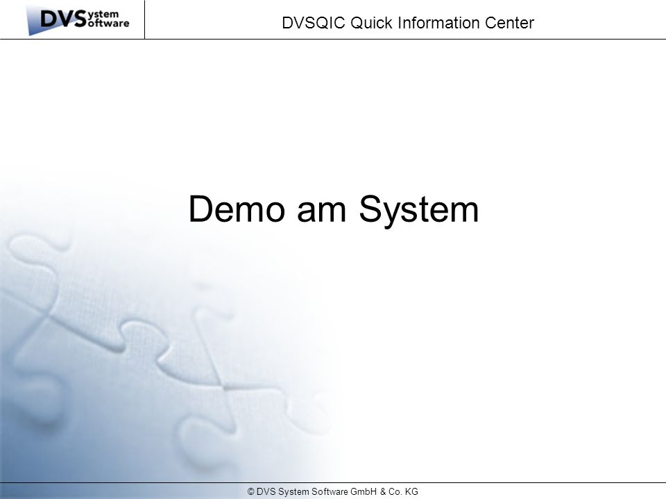 © DVS System Software GmbH & Co. KG DVSQIC Quick Information Center Demo am System