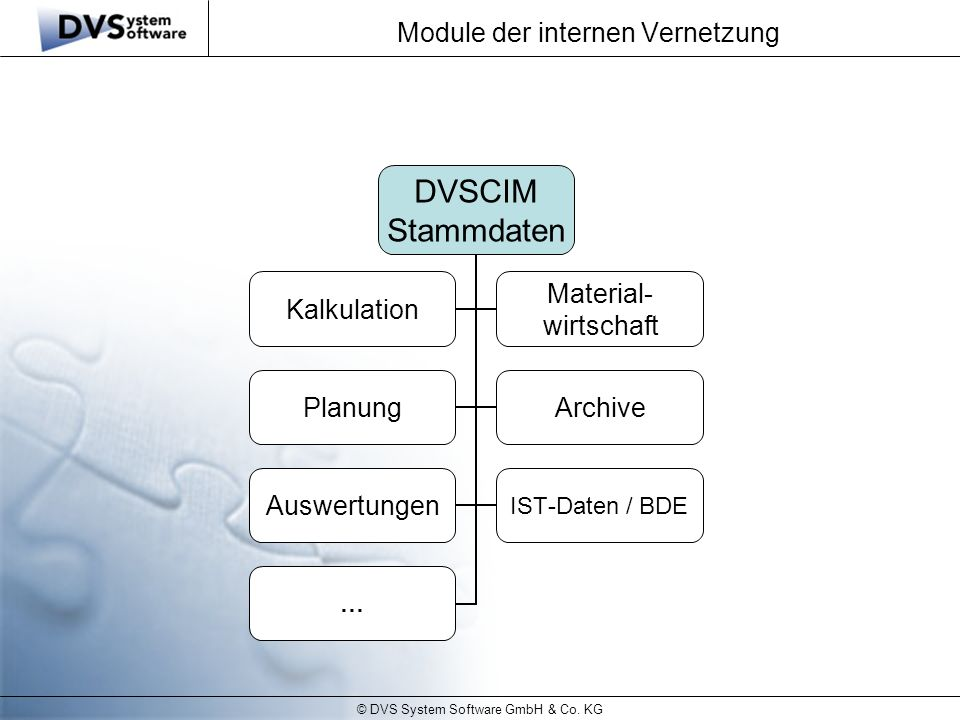 © DVS System Software GmbH & Co.