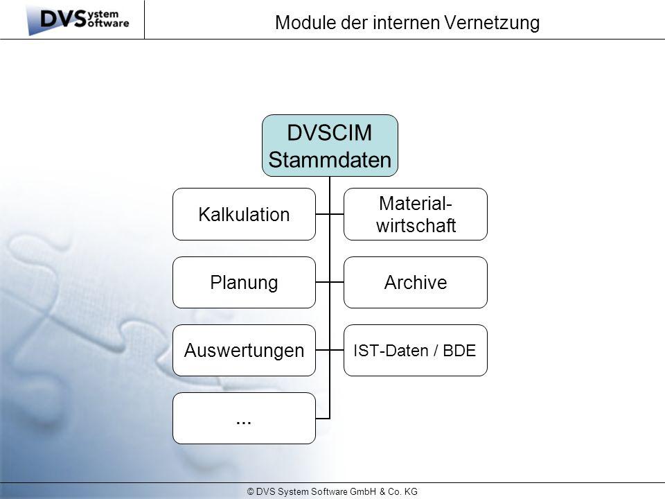 © DVS System Software GmbH & Co. KG Module der internen Vernetzung DVSCIM Stammdaten Kalkulation Material- wirtschaft PlanungArchive Auswertungen IST-
